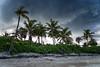 Dark clouds over Bahamas (Michał Banach) Tags: bahamas island paradiseisland beach caribbean clouds dark outside palmtree palms sky stormy storm seaside seashore shore