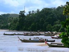 IMG_5906 (Fabiennephotographyx) Tags: photography camera boats sea island trees landscape phuket thailand explore explorer wanderlust travel traveler discovery planet experience asien culture