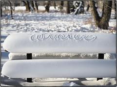 Winter (geelog) Tags: alberta bebogrove calgary fishcreekpark shannonterrace sikomelake ab canada