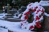 Daresbury Village Church - All Saints (joanjbberry) Tags: daresbury allsaints daresburychurch buildings church gravestones