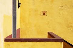 - Sunny  - (Jacqueline ter Haar) Tags: sunny yellow saída zonnig warme kleuren