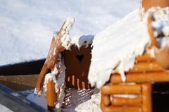 The gingerbread log cabin, detail (dididumm) Tags: gingerbreadlogcabin christmas winter snow baking homemade selbstgemacht backen gebäck schnee weihnachten lebkuchenblockhaus lebkuchenblockhütte lebkuchen