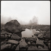 Low River Fog (Hasselblad Version) (DRCPhoto) Tags: hasselblad500cm ultrawide squareformat kodakt400cnfilm cheatriver westvirginia
