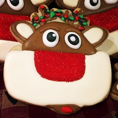 Rudy ..... (steamboatwillie33) Tags: decoratedcookies rudy reindeer 2017 holiday christmas royalicing homemade baked kitchen rudolph rednosed santa delicious snack dessert animal