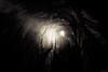 Levada Tunnel - Madeira, Portugal (Sebastian Bayer) Tags: olympus taschenlampe tunnel wanderung menschen madeira portugal dunkel bw levada omdem5ii wandern fluchtpunkt omd unheimlich schwarzweis düster licht urlaub