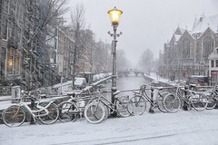 Snow storm in the oldest part of Amsterdam (B℮n) Tags: bike snow covered bikes bicycle holland netherlands canals winter cold wester church street anne dutch people scooter gezellig cafés snowy snowfall atmosphere walking cozy light corner water canal weather cool sunset file celcius mokum pakhuis grachtengordel unesco world heritage sled sleding slee seagull nowandthen meeuw seagulls meeuwen bycicle 1°c sun shadows sneeuw brug slippery glad flakes handheld wind code oudezijdsvoorburgwal sintjansbrug walletjes redlight amsterdam oudekerk liesdelsluis korteniezel brugnr207 100faves topf100 200faves topf200 300faves topf300