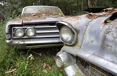 White Cars (epaves68 Thanks for 2.500.000 views!) Tags: white cars uscars junkyard weeds classics voiture ancienne car clunkers overgrown american schrott scap vehicle usa us auto vintage chrome fins fenders rust woods crusty wreck salvage junk forgotten outdoor trees forest abandoned lost exploration decay rusty cargraveyard nature bois autofriedhof automobile epave epaves urbex buick chevrolet chrysler desoto ford lincoln nash oldsmobile plymouth studebaker