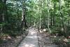 Walkway in Kumgangsan National Park (Timon91) Tags: dprk north korea democratic peoples republic noordkorea noord nordkorea 조선민주주의인민공화국 kim juche chosun communism