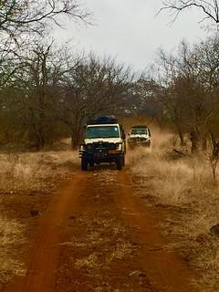 Zimbabwe Cape Buffalo Hunt 60