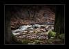 Zauberhafter Ilsenbach (PhotoChampions) Tags: ilsenburg harz ilsenbach bach creek wald woods forest deutschland germany water wasser longtimeexposure langzeitbelichtung landschaft landscape ngc