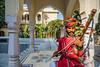 ©Shahid Hashmi (Shahid Hashmi) Tags: asia asian colorful india indianphotographs orient rajasthan rajasthanindia rajasthaniphotographs royal shahid shahidhashmi shahidhashmiphotography jaipur in