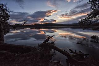 Loch Garten sunrise