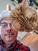 Oliver (dalecruse) Tags: sanfrancisco california unitedstates us oliver cat cats feline felines pet pets orange sf ca usa america dale dalecruse cruse me self selfie flickr lightroom
