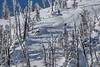 IMG_1763 (tbd513) Tags: newyears idaho snowboarding snowmobiling winter20172018