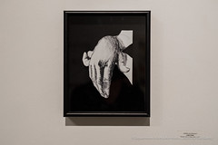 hoopsnake-4891 (olemiss_artdept) Tags: art department fine oxford tupelo ms mississippi universityofmississippi university gallery 130 meek hall campus paint painting print printmaking charcoal drawing portrait
