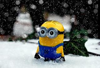 Minion im Winter