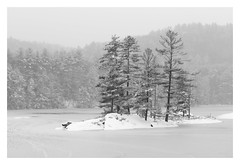 A Long December (bprice0715) Tags: canon canoneos5dmarkiii canon5dmarkiii landscape landscapephotography naturephotography nature beautiful beauty beautyinnature blackandwhite blackwhite bw monochrome mono highkey winter snow snowylandscape hudsonriver river trees peaceful serene serenity minimalism minimal outdoors december