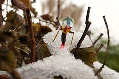 Rasante Abfahrt (Perspektivenwechsel / Fotografie Sabine Werfel) Tags: smallpeoplesworld miniature preiserphotography tiny wintersport