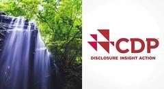 Elismerést nyert a Nissan vízgazdálkodása globális nagyvállalatok legjobbai közt (autoaddikthu) Tags: autó jármű kocsi nissan vízgadálkodás