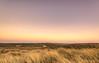 Moonshine over the dunes. (Alex-de-Haas) Tags: 1635mm d750 hdr holland hollandseluchten julianadorp nederland nikkor nikon noordholland noordkop thenetherlands clearskies cloudless duinen duingebied dunes goldenhour grijzeduinen landscape landschap lucht onbewolkt scenery sereen serene skies sky sun sundown sunset unclouded unshadowed zon zonsondergang
