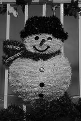 Week 49 (Contrast) 12-17-17 (MelenaMe) Tags: contrast snowman hat scarf buttons railing rails rail poinsettia christmas