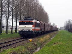 RFO 1831 (jvr440) Tags: trein train spoorwegen railways railroad locomotive amsterdam houtrakpolder ruigoord westhaven rfo rail force one 1600 1800 1831