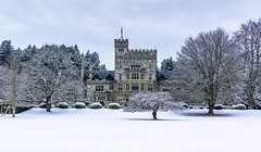 Christmas at Hatley Castle (Paul Rioux) Tags: royalroads university colwood bc winter snow ice cold outdoor oldbuilding cloudy christmas prioux