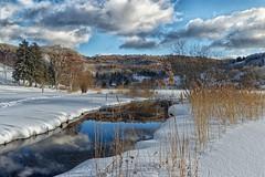 Lac sous la neige - Savoie (gerardcarron) Tags: canon80d calme hiver lac montagne paysage savoie neige snow eau nuages cloud arbre ciel lathuile sky landscape water mountains lake