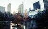 Morning at Central Park, NYC 2017 (ocarmona) Tags: newyork centralpark manhattan canon a2e 400asa film filmphotography 1740mm