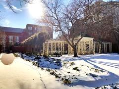 Chippendale Pavilion (baccarati) Tags: independencenhp brightsunnyday glare sunshine animaltracks oldcity winter snowday gazebo arbor pavilion phillysnow snow garden philly