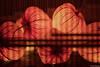hozuki (it05h1) Tags: nature light lights japan summer plants plant art tokyo illuminated illumination japanese vegetation meguro lighted lightup groundcherry akari chineselantern wintercherry meguroku hozuki it05h1 physalisalkekengi husktomato japanscape bladdercherry strawberrytomato