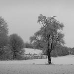 Snow 1 thumbnail