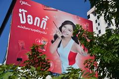 2017_12_16  (29) (Eugene's Image Garden) Tags: thailand chiangmai เจียงใหม่ toey