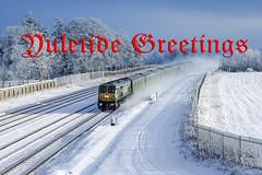 219 & MK4s 11:00 Heuston-Cork at Stacumny bridge 08-Jan-10 (metrovick) Tags: irishrail iarnrodeireann ie201class railroad railway ie219 mk4 iemk4 emd emdexportloco jt42hcw stacumnybridge snowtrain railwaysnow