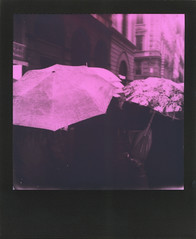 Fantasia d'inverno (ale2000) Tags: polaroid analog analogue instant instantphotography polaroidoriginals onestep2 600 duochrome pink rosa black nero square frame blackframe firenze florence streetphotography umbrellas winter wintertime inverno ombrelli