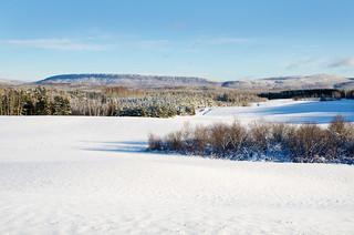 Paysage d'hiver à St-Narcisse de Rimouski.