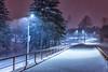 Blizzard, 25.12 (alex.eganov) Tags: russia sakhalin d750 island nikon travel россия сахалин остров путешествие blizzard snow tamron tamronlens tamron35mm 35mm