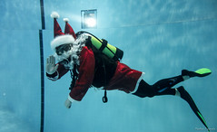 Tonttupulaus 2017 (puumalamarkus) Tags: diving pool underwater christmas santa rx100 ikelite water