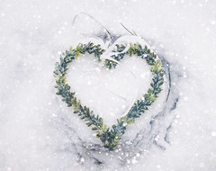 Seasons greetings (mirri_inc) Tags: heart snow white winter christmas holiday merry season greeting green nature outdoors cold love sweet vintage