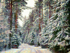 December Scenery (Kalev Vask.) Tags: digital kalevvask postprocessed photoshop photomanipulation digiart photoart painterly artistic creative estonia winter manipulated ownphoto phototopainting trees snow mediachance dap