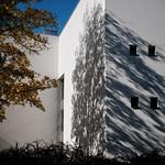 autumn projection thumbnail