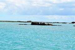 MACEIO 0052 (tinancv) Tags: maceio alagoas brach praia