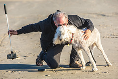 The Amazing Margaux (Thomas Hawk) Tags: america margaux newport oregon oregoncoast scottjordan standardpoodle usa unitedstates unitedstatesofamerica beach dog poodle or us fav10