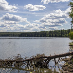 Shoreline, Waskesiu Lake, Prince Albert National Park thumbnail