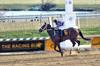 "2017-12-11 Laurel Park (JLeeFleenor) Tags: photos photography md marylandracing maryland marylandhorseracing jockey جُوكِي ""赛马骑师"" jinete ""競馬騎手"" dżokej jocheu คนขี่ม้าแข่ง jóquei žokej kilparatsastaja rennreiter fantino ""경마 기수"" жокей jokey người horses thoroughbreds equine equestrian cheval cavalo cavallo cavall caballo pferd paard perd hevonen hest hestur cal kon konj beygir capall ceffyl cuddy yarraman faras alogo soos kuda uma pfeerd koin حصان кон 马 häst άλογο סוס घोड़ा 馬 koń лошадь laurelpark"