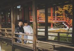 Daikaku-ji 大覚寺. Kyoto (H.L.Tam) Tags: 京都 life iphoneography 大覚寺 sketchbook iphone8plus street autumn streetphotography 日本 iphone daikakuji kyoto photodocumentary documentary japan japanese people 紅葉 日本人