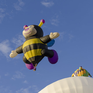 Bee Hot Air Balloon