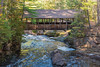 Amnicon Bridge 1s (Greg Riekens) Tags: autumn usa amniconfallsstatepark bridge nikond500 midwest fall coveredbridge waterfall waterfalls forest wisconsin path hiking amnicon statepark amniconriver