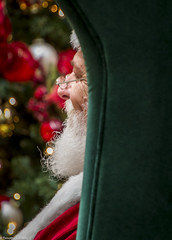 Santa Resting After a Long Night (allentimothy1947) Tags: california christmas2016 places family sacramento santa santarosa holiday resting beard decorations