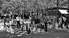 Checkmate in two moves (gerard eder) Tags: world travel reise viajes europa europe switzerland suisse suisa geneve genf genève chess outdoor bw sw blackandwhite blackwhite blancoynegro städte street stadtlandschaft streetlife streetart city ciudades cityscape cityview park parque